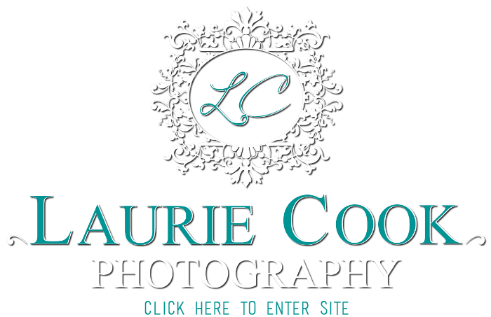 Laurie Cook Photography
